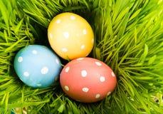 Wielkanoc kolor jaj Zdjęcie Royalty Free