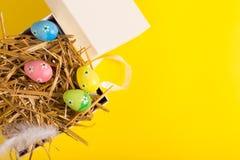 Wielkanoc kolor jaj Fotografia Royalty Free