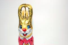 Wielkanoc królik. Obraz Royalty Free