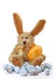 Wielkanoc królik. Obrazy Royalty Free