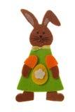 Wielkanoc królik. Fotografia Stock