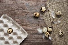Wielkanoc Przepiórek jajka z piórkami na drewnianej powierzchni Obrazy Stock