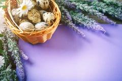 wielkanoc szczęśliwy Gratulacyjny Easter tło wielkanoc jaj kwiaty Zdjęcie Stock