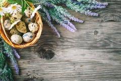 wielkanoc szczęśliwy Gratulacyjny Easter tło wielkanoc jaj kwiaty Obrazy Royalty Free
