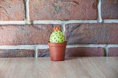 wielkanoc szczęśliwy Naturalny barwidło Wiosen rozsady charcica Kaktusowy kwitnienie DIY i handmade Malujący jajko Jajeczny polow zdjęcie stock