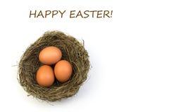 wielkanoc szczęśliwy Odgórnego widoku gniazdeczko z trzy całymi brown jajkami odizolowywającymi na białym tle Odbitkowa przestrze Zdjęcia Royalty Free