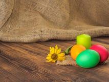 Wielkanoc tort i Easter barwiliśmy jajko z suchym kwiatem Rosjanin i kniaź ortodoksyjni, slavic tradycyjny Wielkanocny kulich dal Zdjęcie Royalty Free