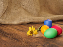 Wielkanoc tort i Easter barwiliśmy jajko z suchym kwiatem Rosjanin i kniaź ortodoksyjni, slavic tradycyjny Wielkanocny kulich dal Fotografia Stock