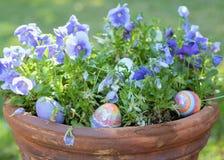 Wielkanoc w doniczkowej ro?linie fotografia stock