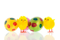 Wielkanoc z jajkami i małymi kurczątkami obrazy stock