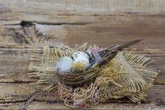 Wielkanocna dekoracja - jajka w gniazdeczku i ptaku zdjęcia stock