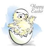 Wielkanocna karta z nowonarodzonym kurczakiem Obraz Stock