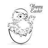 Wielkanocna karta z nowonarodzonym kurczakiem Zdjęcia Stock