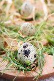 Wielkanocne dekoracje zdjęcie stock