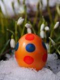 Wielkanocnego jajka łąki śnieżyczka Zdjęcia Royalty Free