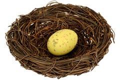Wielkanocnego jajka gniazdeczko Obrazy Stock