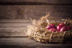 Wielkanocnego jajka gniazdeczko na drewnianym tle Obrazy Royalty Free