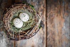 Wielkanocnego jajka gniazdeczko na nieociosanym drewnianym tle Obraz Royalty Free
