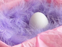 Wielkanocnego jajka karta - Akcyjne fotografie Zdjęcia Royalty Free