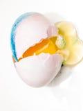 Wielkanocnego jajka kolorystyka Zdjęcie Royalty Free