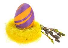 Wielkanocnego jajka ręka malująca w żółtym ptasim ` s gniazdeczku z kwitnienie gałązką Obraz Stock