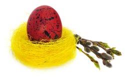 Wielkanocnego jajka ręka malująca w żółtym ptasim ` s gniazdeczku z kwitnienie gałązką Obrazy Stock