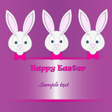 Wielkanocnego królika karta Zdjęcia Royalty Free