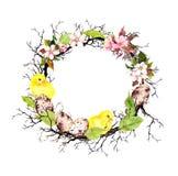 Wielkanocni żółci kurczątka, jajka, jabłko kwiaty, gałąź, wiosna opuszczają Kwiecisty wianek dla wielkanocy Akwareli granica Obraz Stock