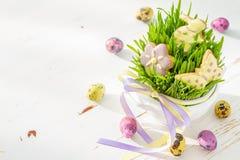Wielkanocni ciastka i jajka z trawą Zdjęcie Royalty Free