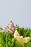 Wielkanocni ciastka z trawą Obrazy Royalty Free