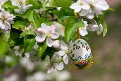 Wielkanocni egss wiesza na gałązce obraz stock