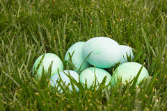 Wielkanocni jajka Fotografia Stock