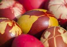 Wielkanocni jajka Zdjęcia Royalty Free