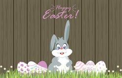 Wielkanocni jajka dla decoration3 Zdjęcie Stock