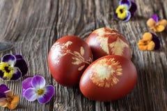 Wielkanocni jajka farbujący z cebulkowymi łupami z wzorem ziele zdjęcie royalty free