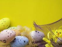 Wielkanocni jajka i żółci kurczaki odizolowywający na żółtym tle zdjęcie stock