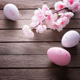 Wielkanocni jajka i czereśniowy okwitnięcie Zdjęcia Stock
