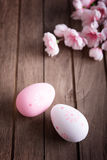 Wielkanocni jajka i czereśniowy okwitnięcie Obrazy Royalty Free