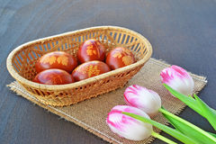 Wielkanocni jajka i tulipany Fotografia Stock