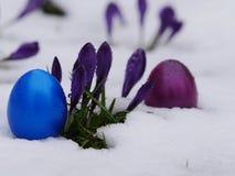 Wielkanocni jajka kłaść śniegów kwiaty Zdjęcia Royalty Free