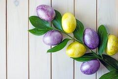 Wielkanocni jajka koloru żółtego, purpur i zieleni gałąź zieleń z wielkimi liśćmi fotografia royalty free
