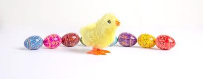 Wielkanocni jajka & kurczątko Zdjęcie Stock