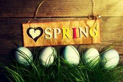 Wielkanocni jajka na Świeżej Zielonej trawie na Drewnianym tle z Pogodnym Obraz Royalty Free