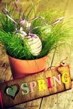 Wielkanocni jajka na Świeżej Zielonej trawie w kwiatu garnku na Drewnianym Backgro Zdjęcie Royalty Free
