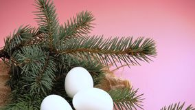Wielkanocni jajka na różowym tle z sprig świerczyna zbiory wideo