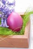 Wielkanocni jajka na trawie Obrazy Royalty Free