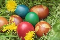 Wielkanocni jajka na trawie Obrazy Stock