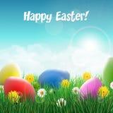 Wielkanocni jajka na trawy polu z kwiatami Fotografia Stock
