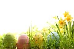 Wielkanocni jajka na zielonej trawie Fotografia Royalty Free