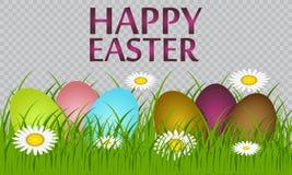 Wielkanocni jajka na zielonej trawie obraz stock